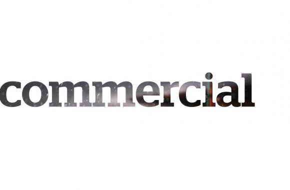 Commercial_register_esute